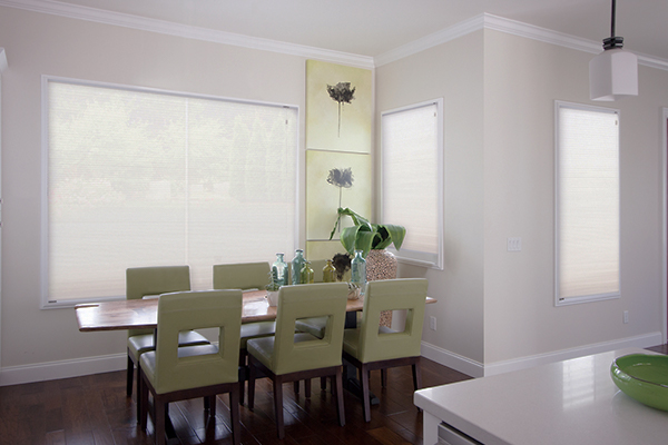 Blinds in dining room closed